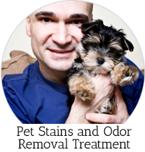 pet stain & odor cleaning
